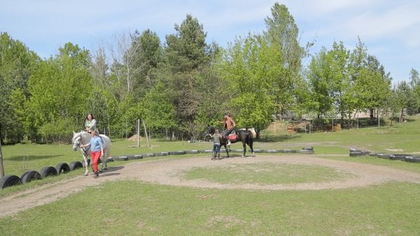 Прогулка в лесу на лошадках для двоих