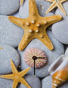 Часы Art-Life «Морская звезда»