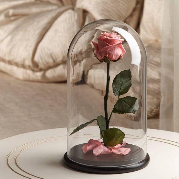 Роза в колбе «The Rose» Premium Baby Pink