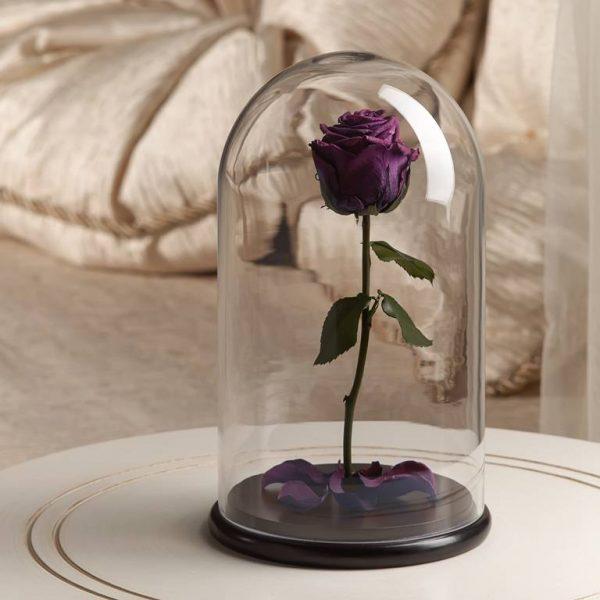 Роза в колбе «The Rose» Premium Purple