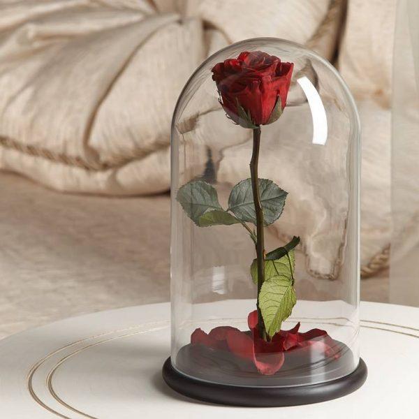 Роза в колбе «The Rose» Premium Romantic Red