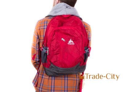 Женский рюкзак ONEPOLAR (red)