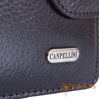 Кошелек женский кожаный CANPELLINI (SHI967-7)