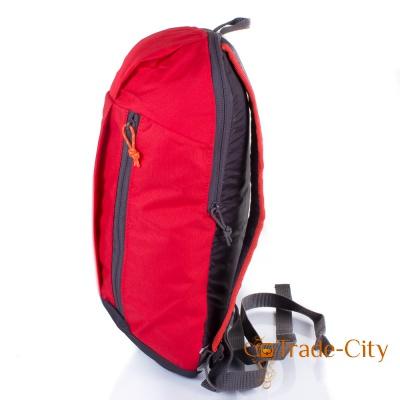 Спортивный рюкзак QUECHUA (ARP001-1)