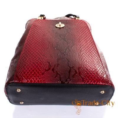 Женская кожаная сумка-рюкзак DESISAN (SHI3132-500)