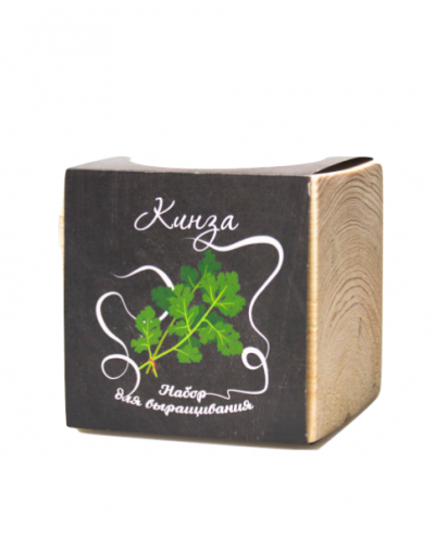 Набор для выращивания ЭкоКуб «Кинза»
