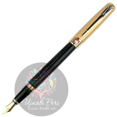 Ручка перьевая Picasso 906