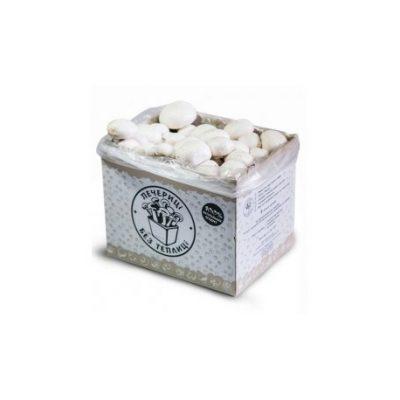 Грибная коробка для выращивания (шампиньоны белые)