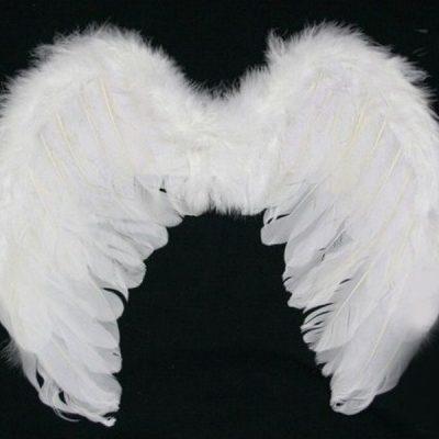 Крылья ангела белые 45х35
