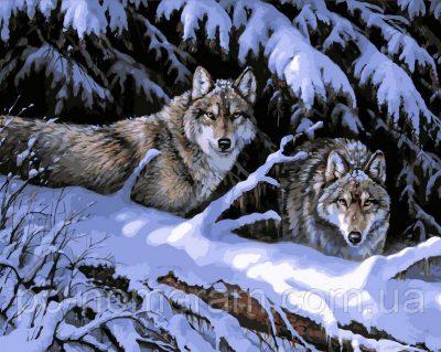 Картина-раскраска DIY Babylon «Волки в лесу» художник Розмари Миллетт