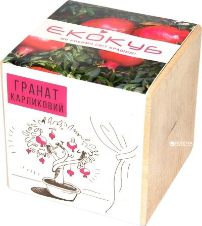 Набор для выращивания Экокуб «Гранат Карликовый»