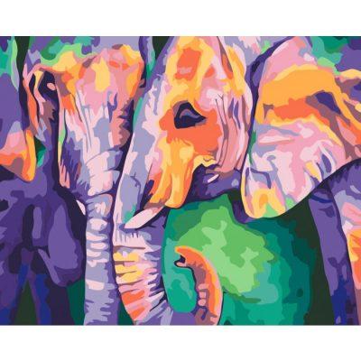 Картина по номерам «Краски Индии»