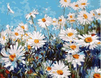 Картина по номерам «Ромашковая поляна»