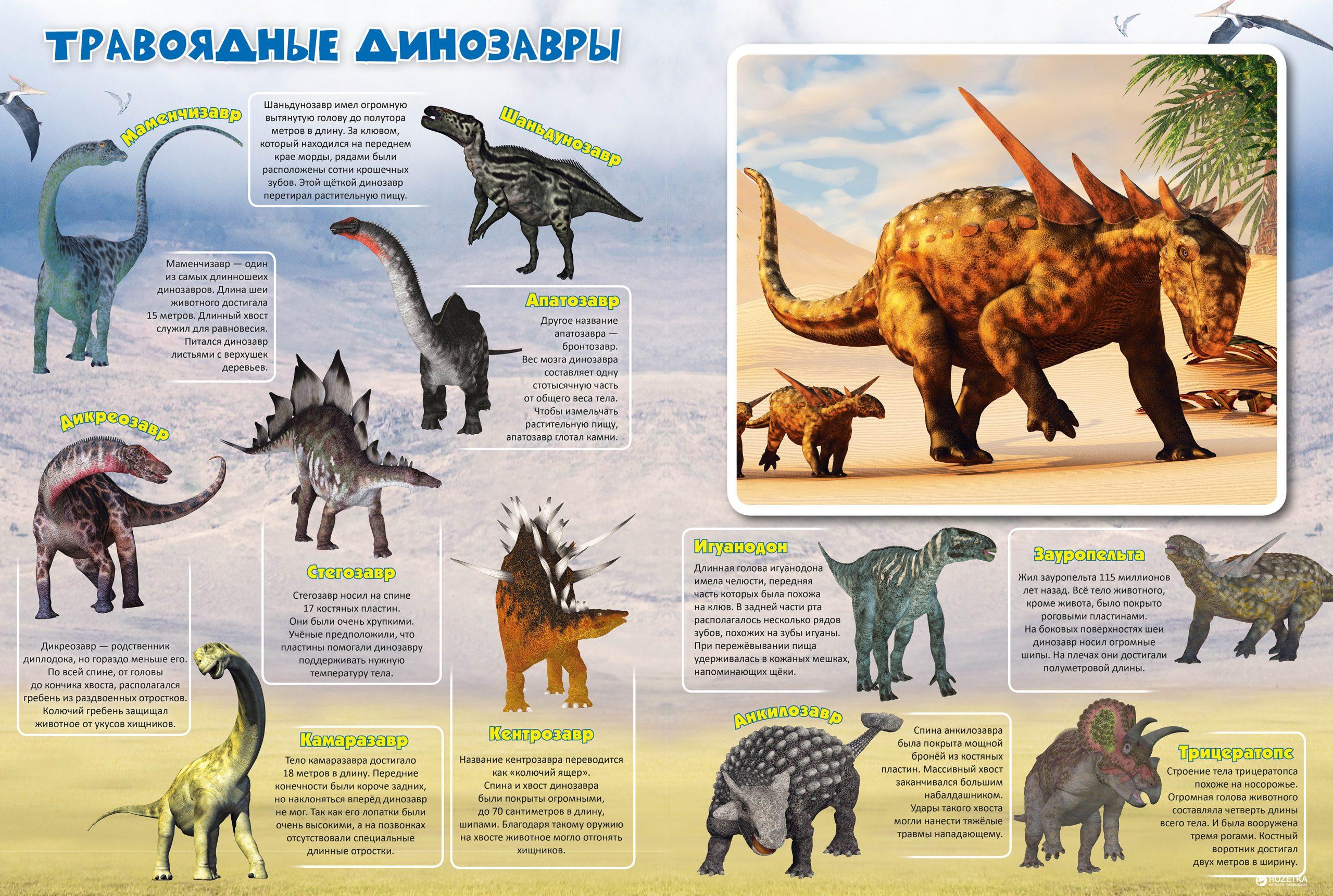 Книга-игра «Динозавры. Собери пазл» Жученко М.С.