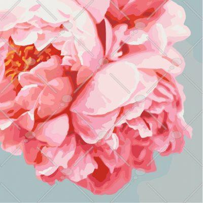 Картина по номерам «Розовые пионы»