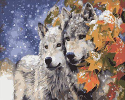 Картина по номерам «Пара волков»