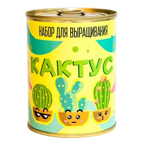 Консерва-рослина «Кактус»
