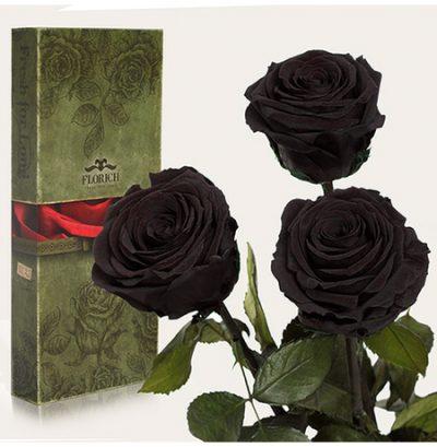 Три долгосвежих розы «Черный бриллиант»