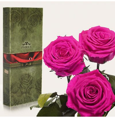 Три долгосвежих розы «Малиновый родолит»