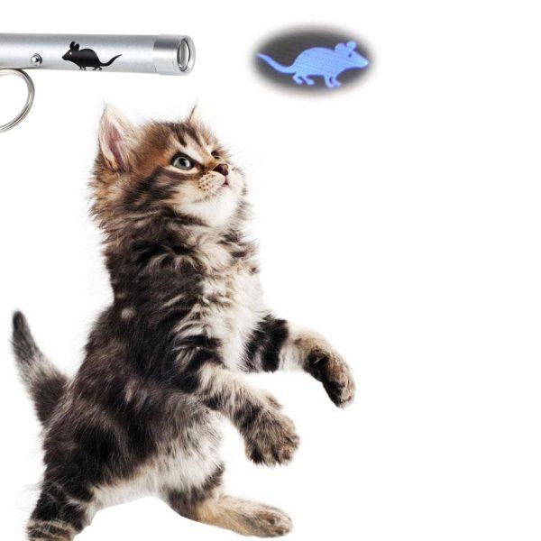 Анимационный лазер для кота