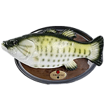 Рыбалка - Подарки Онлайн
