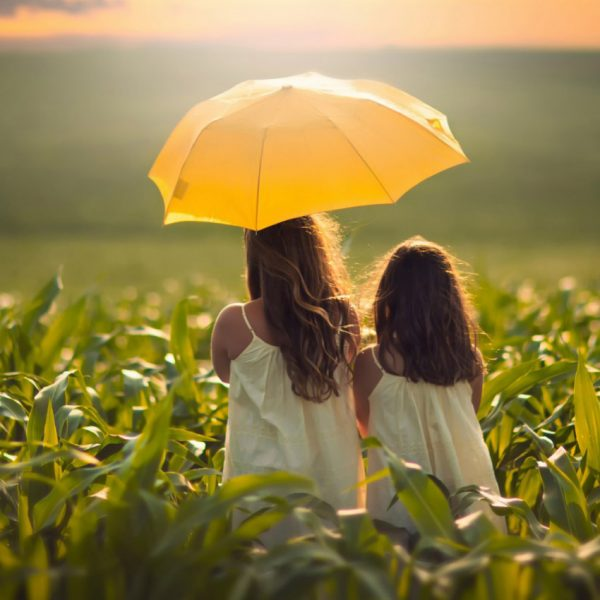 Зонт «Кукуруза»