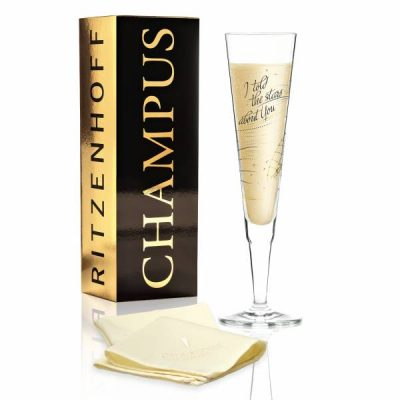 Бокал для шампанского от Natalia Yablunovska (Я говорил звездам о тебе) 205 мл