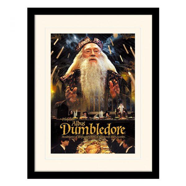Постер в раме «Harry Potter (Dumbledore)» 30 x 40 см