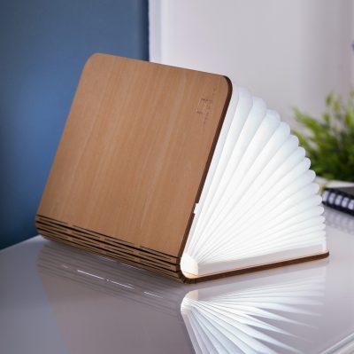 Светильник-книга MAPLE SMART мини, дерево клен