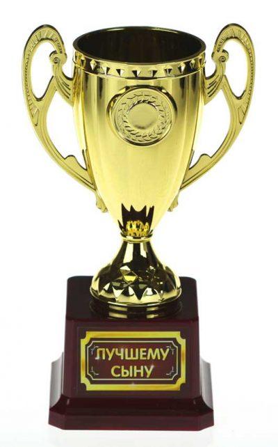 Кубок керамика «Лучшему сыну» с чашей